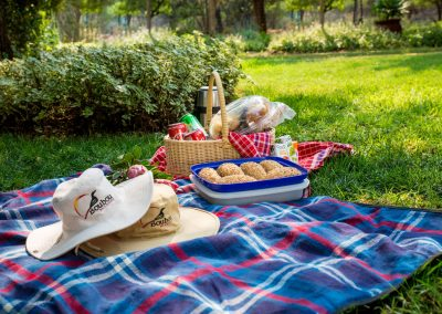 Picnic Basket (Optional)