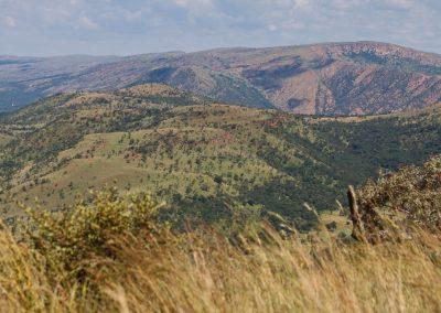 Magaliesburg Nature Reserve